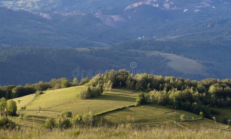 Färgrikt sommarlandskap fotografering för bildbyråer