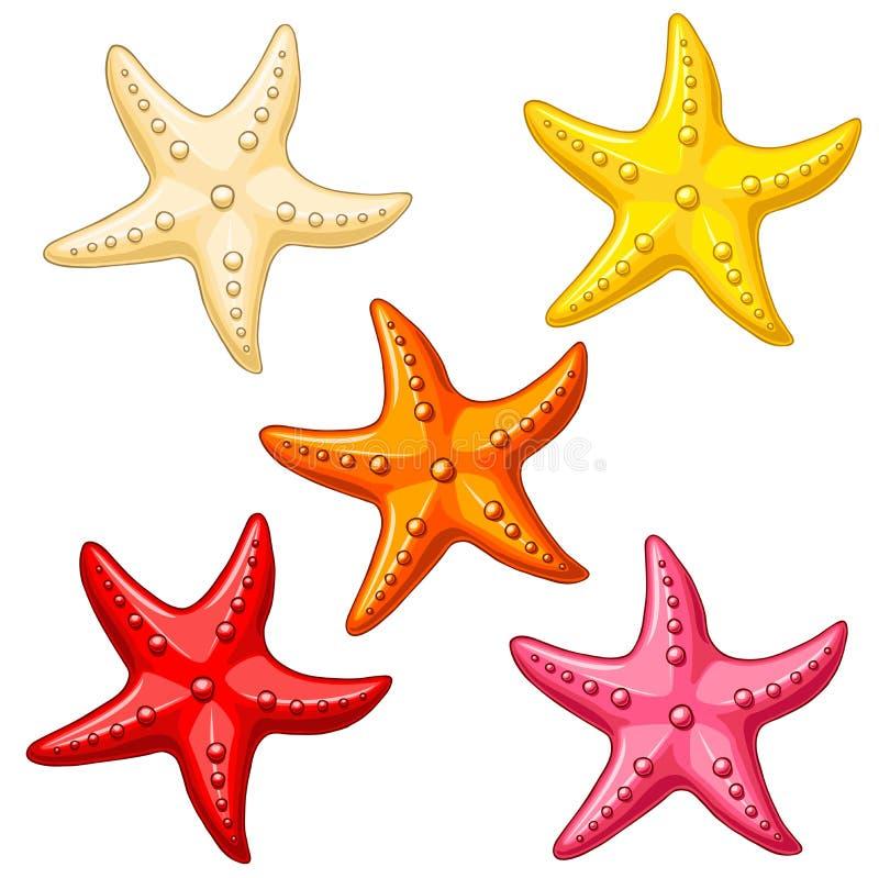 Färgsjöstjärna för uppsättning fem på vit royaltyfri illustrationer