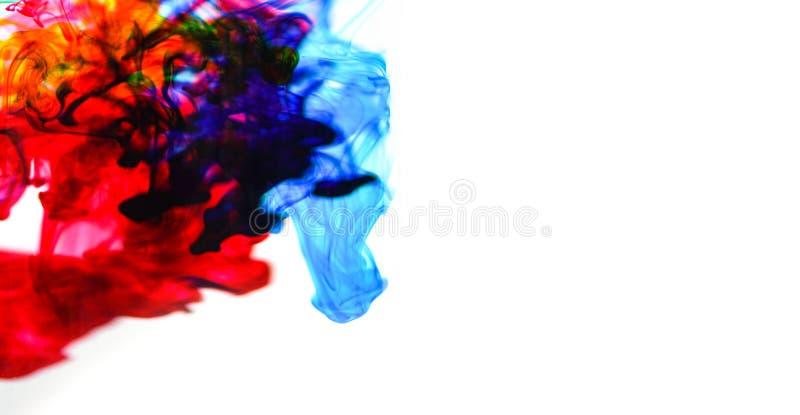 Färgstänk för färg för Cmyk färgpulverbegrepp för färger för målarfärg-/regnbågefärgpulverdroppakryl i vatten på vit bakgrund arkivfoton