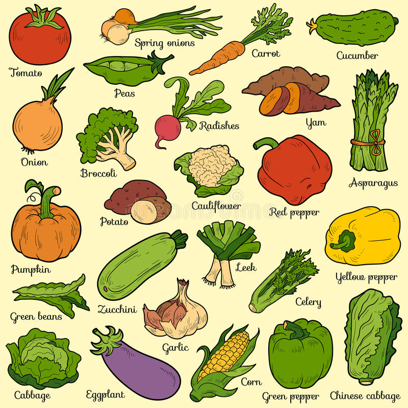 Färguppsättning med grönsaker, vektortecknad filmklistermärkear royaltyfri illustrationer