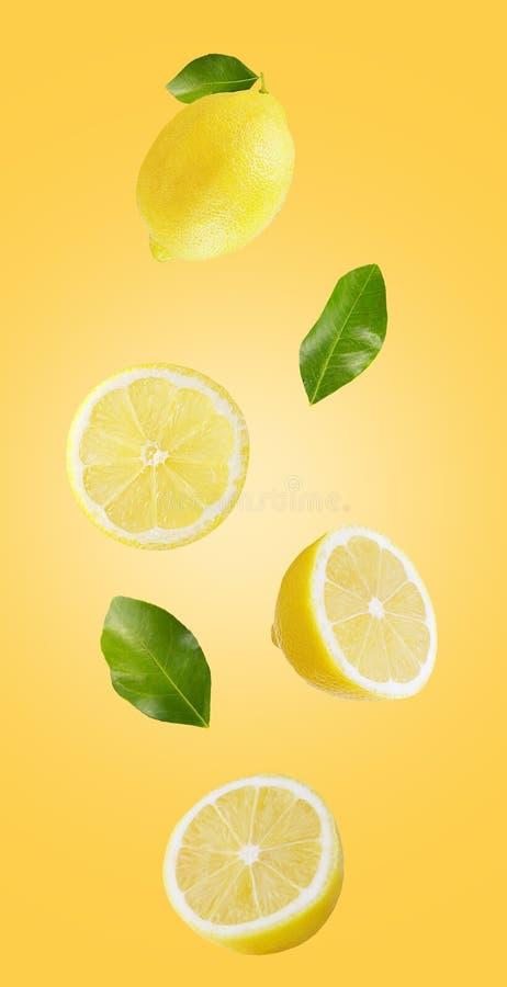 Färska fallande gula citroner som isolerats på röd botten royaltyfri bild