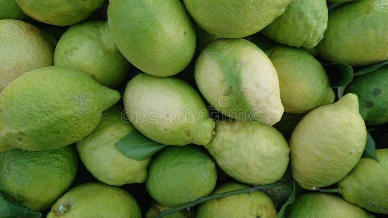 Färska gröna citroner, avslutning royaltyfria foton