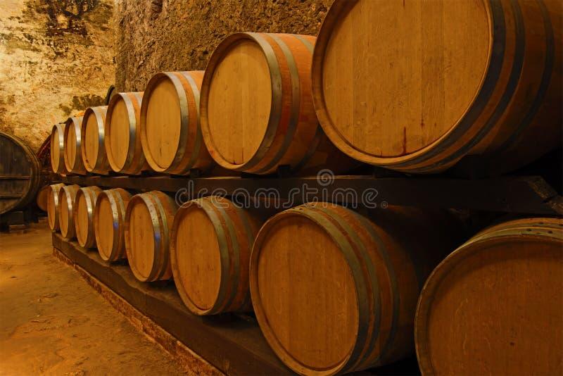Fässer des jungen Weins in einem alten Weinkeller Toskana, Italien lizenzfreies stockbild