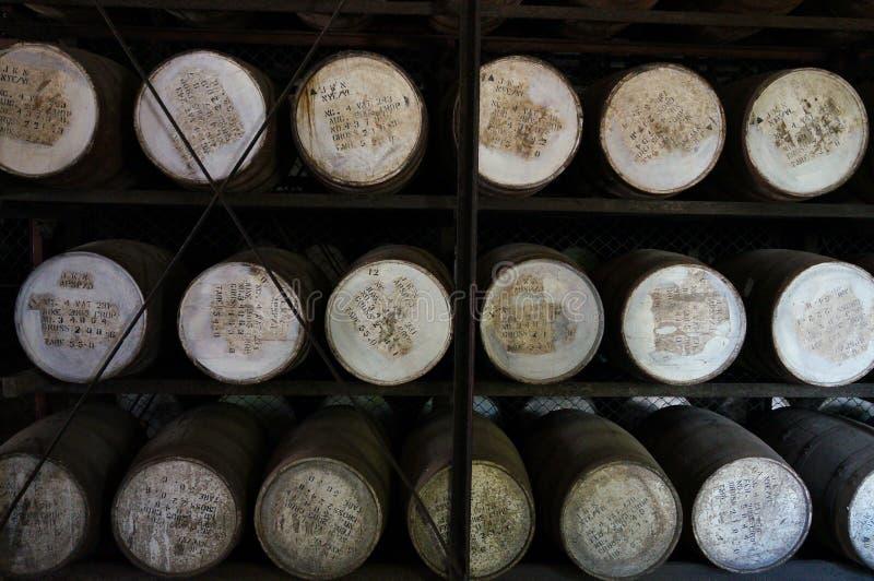 Fässer in einer Rumfabrik lizenzfreie stockbilder