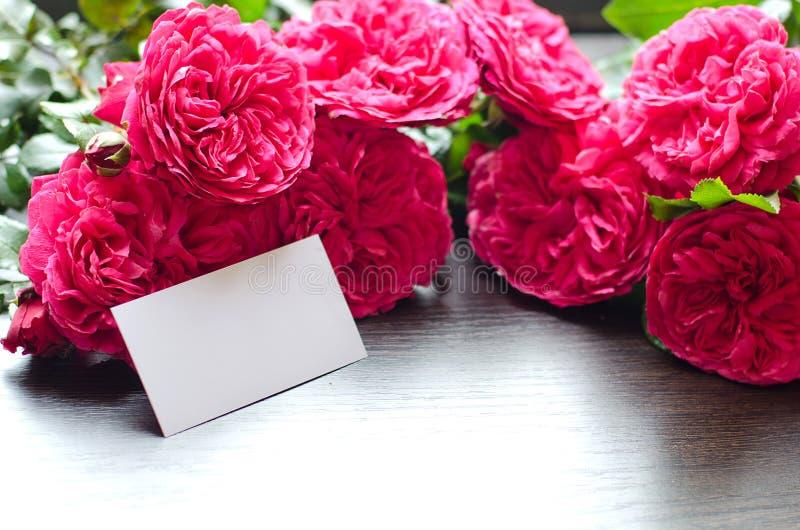 Få härliga rosor arkivbilder