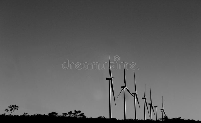 Fåfängt för Bahia - Itacaré vind arkivbild