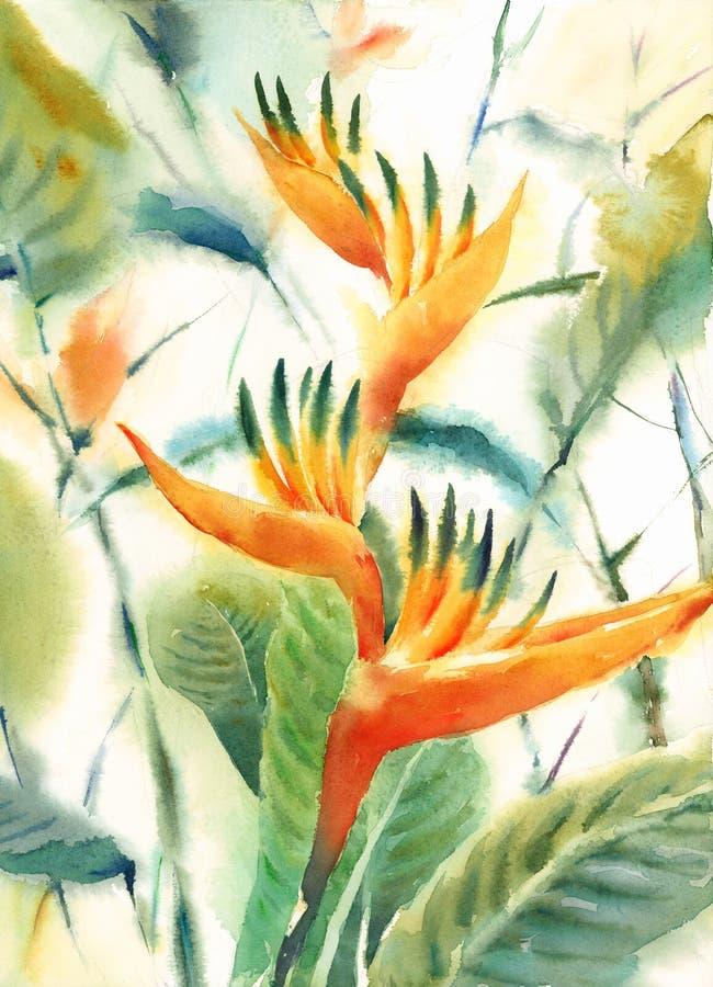 Fågel av den målade handen för illustration för paradisvattenfärgblommor stock illustrationer