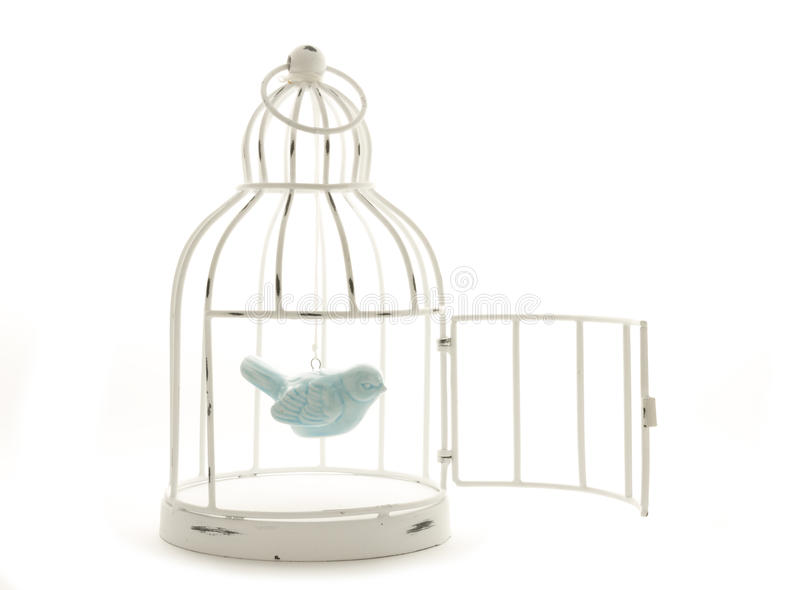 Fågel i bur arkivfoto