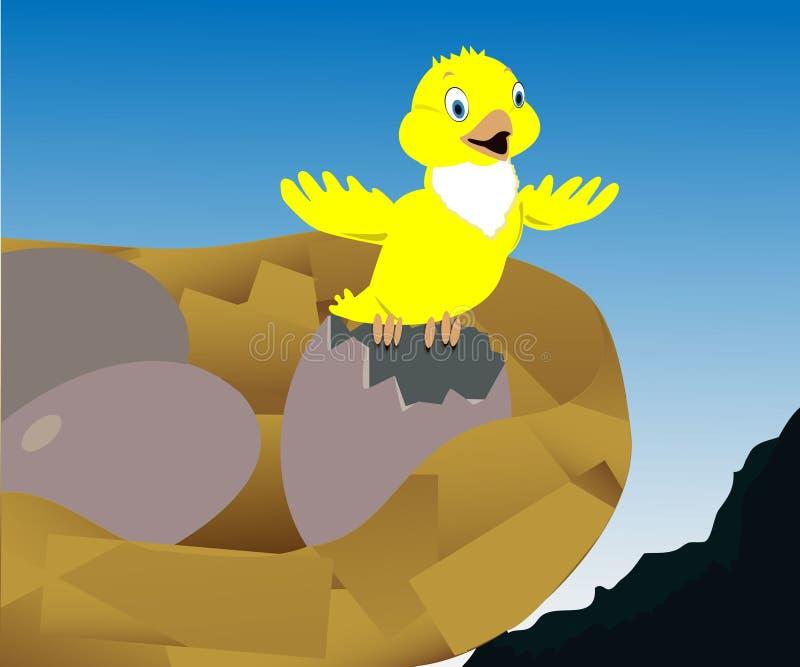 Fågel i redet arkivfoton