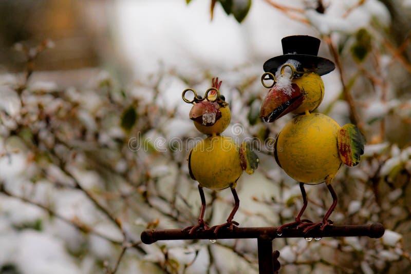 Fågel och insnöad vinter royaltyfri bild