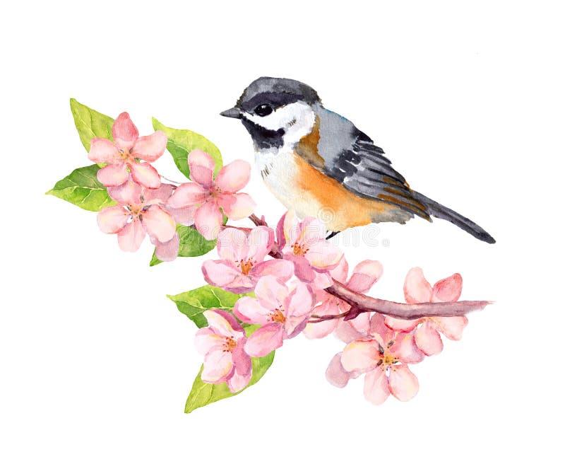 Fågel på blomningfilial med blommor vattenfärg stock illustrationer