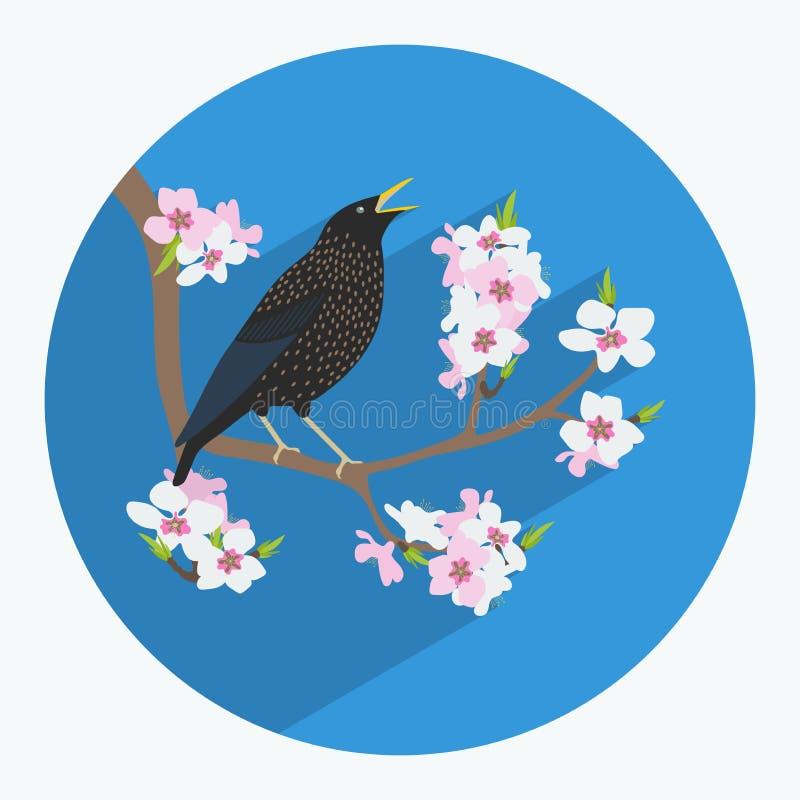 Fågel som göras i plan stil vektor illustrationer