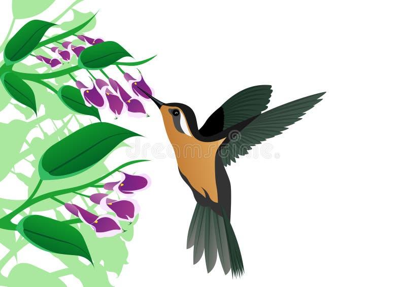 fågel som surr stock illustrationer