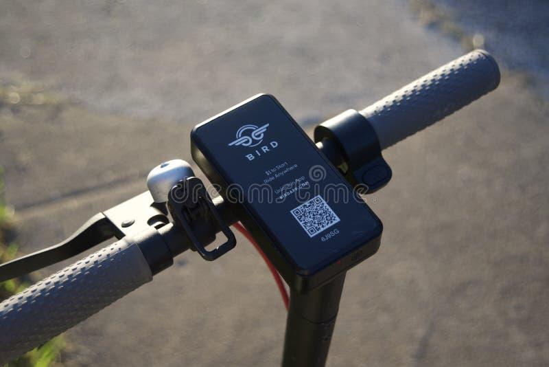 Fågelelkraftsparkcykel fotografering för bildbyråer