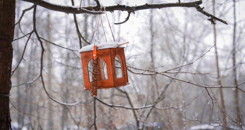Fågelförlagematare i vintern i skogen arkivfoton
