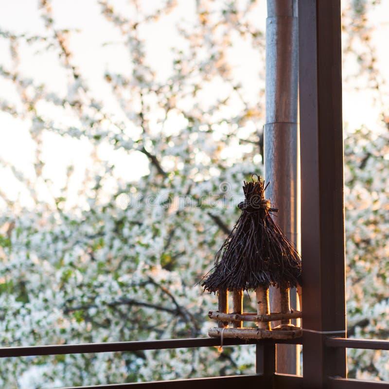 Fågelförlagematare på balkong royaltyfri fotografi