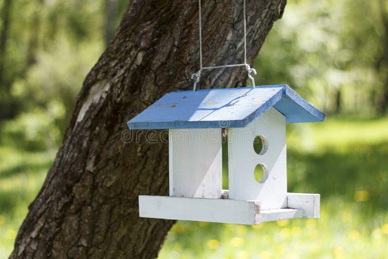 Fågelförlagematare som hänger på ett träd i parkera fotografering för bildbyråer