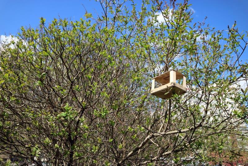 Fågelförlagematare träenkel överst av trädet i sommar arkivfoto
