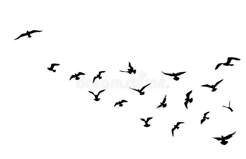 Fågelflock som flyger över bakgrund för blå himmel Djurt djurliv stock illustrationer