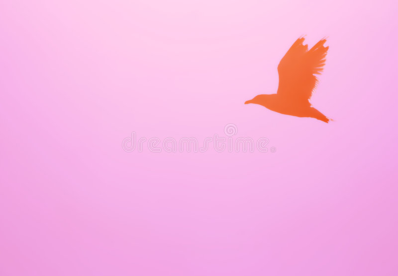 fågelflygsilhouette stock illustrationer