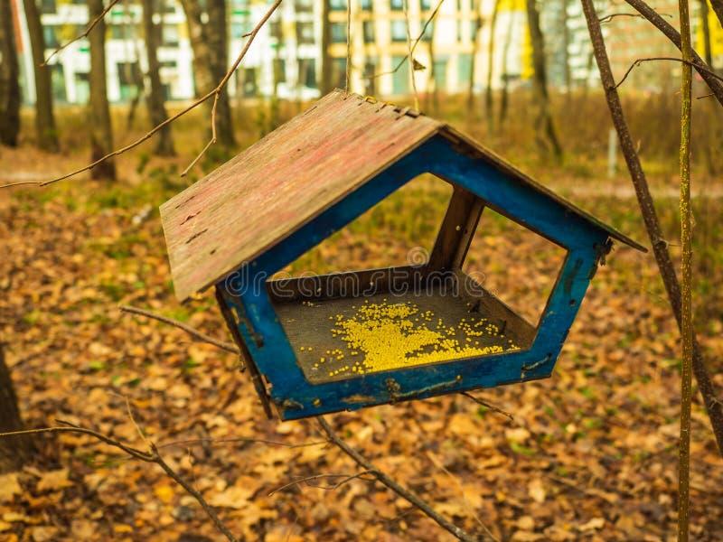 Fågelhuset på ett träd i parkerar arkivfoto