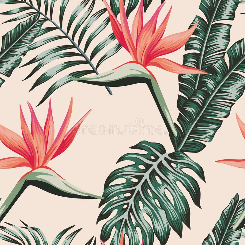 Fågeln av paradiset lämnar grön färg den tropiska sömlösa modellen royaltyfri illustrationer
