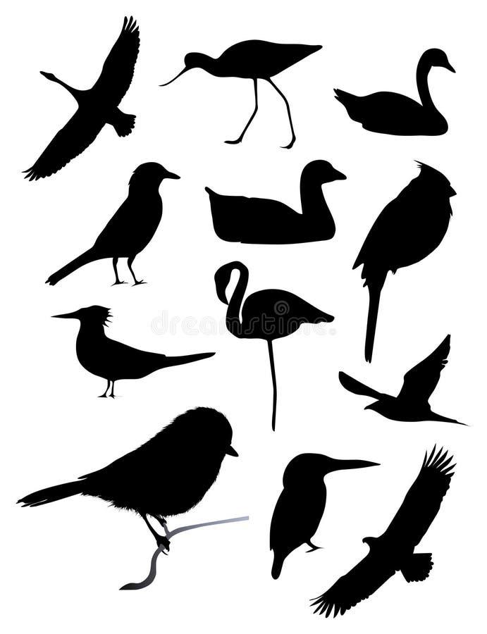 fågeln silhouettes tolv royaltyfri illustrationer