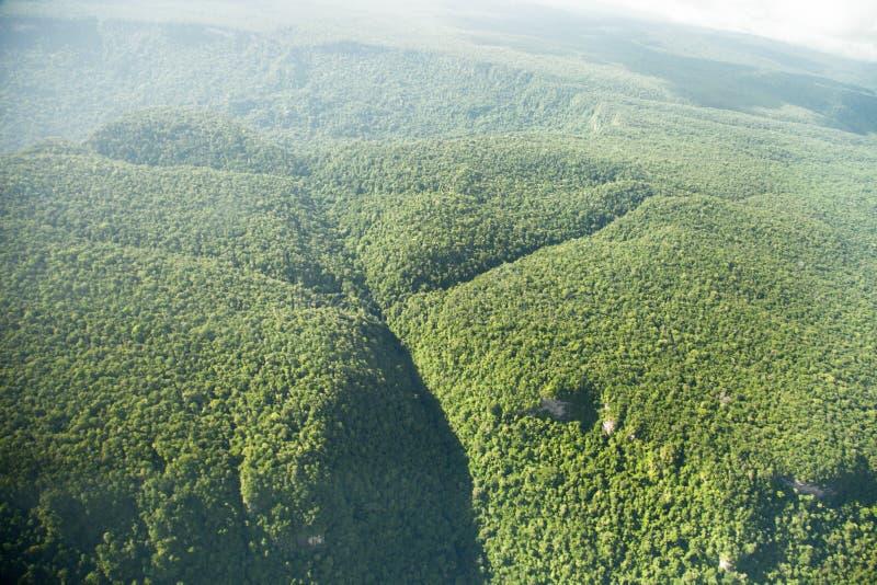 Fågelperspektiv av djungeln med kulleberg som tas från nivån royaltyfri bild