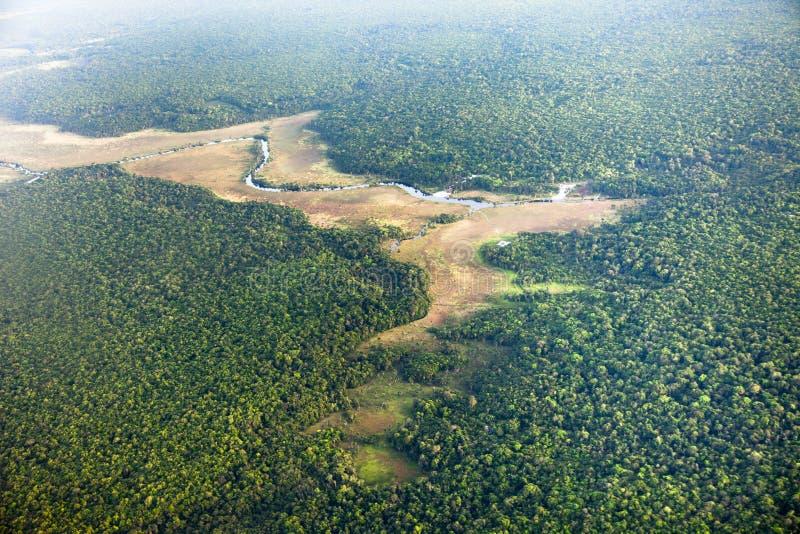 Fågelperspektiv av floden och djungeln arkivbilder
