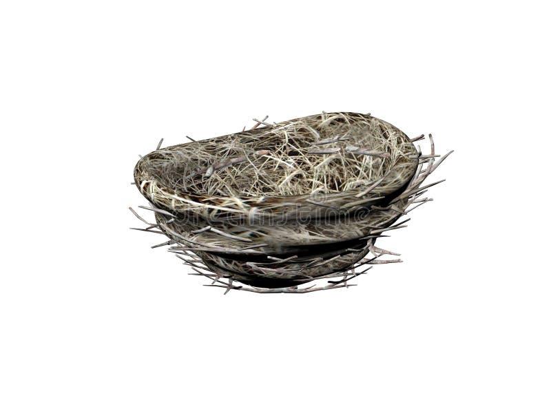 Download Fågelrede arkivfoto. Bild av planläggning, evergreen, green - 286764