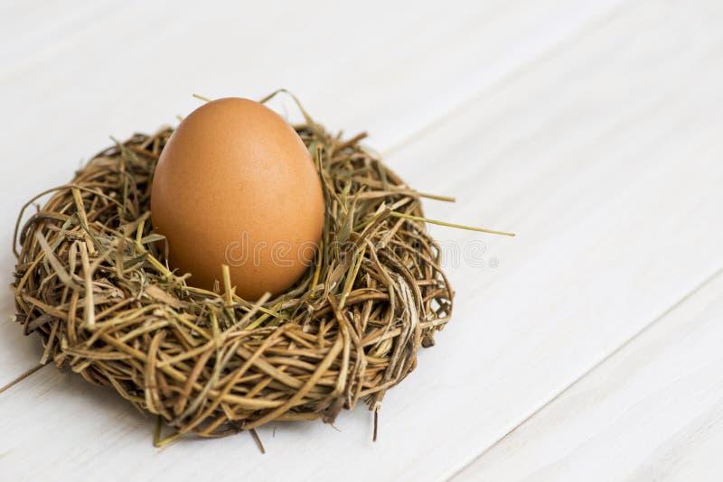 Fågelrede med det stora ägget på vit träbakgrund Ägg i rede på vit träbakgrund arkivfoto