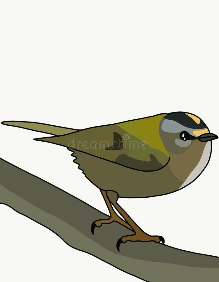 FågelRegulus vektor illustrationer