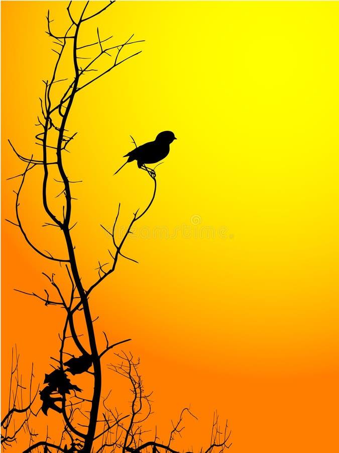 fågelsilhouette royaltyfri illustrationer