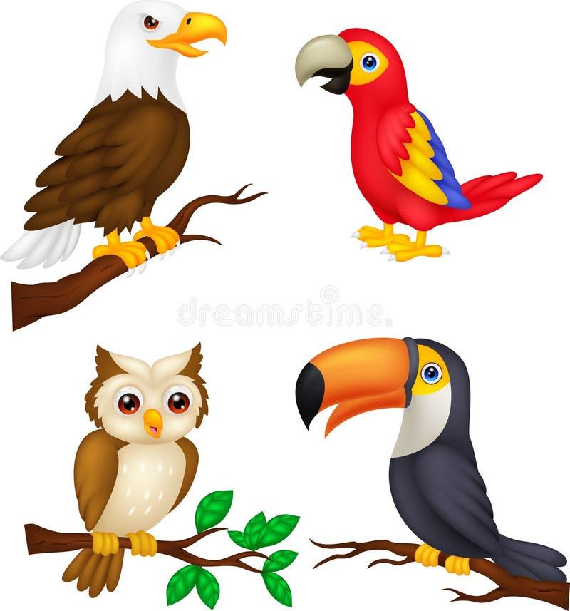 Fågeltecknad filmsamling royaltyfri illustrationer
