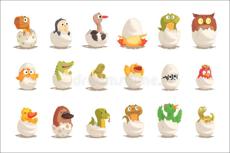 Fågelungar och reptilar kläcker från ägg ställde in, ofödda djurvektorillustrationer vektor illustrationer