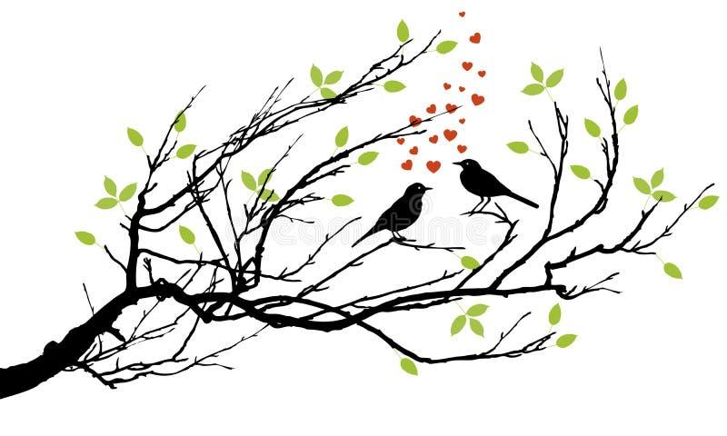 fåglar älskar två stock illustrationer