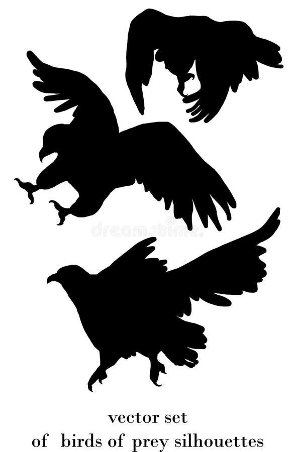 Fåglar av rovkonturer vektor illustrationer