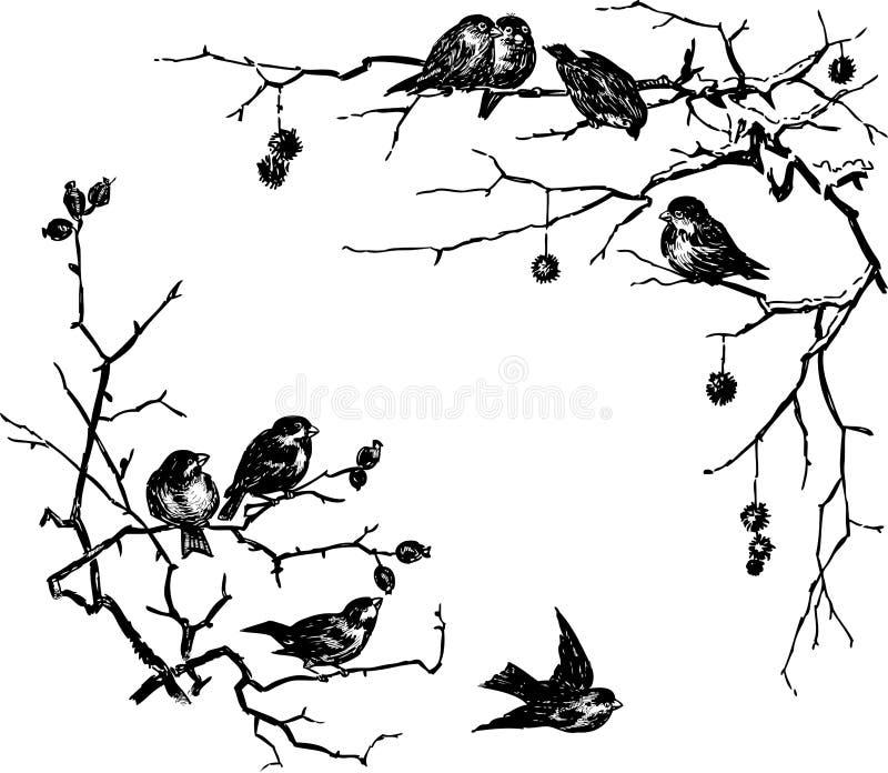 Fåglar förgrena sig på royaltyfri illustrationer
