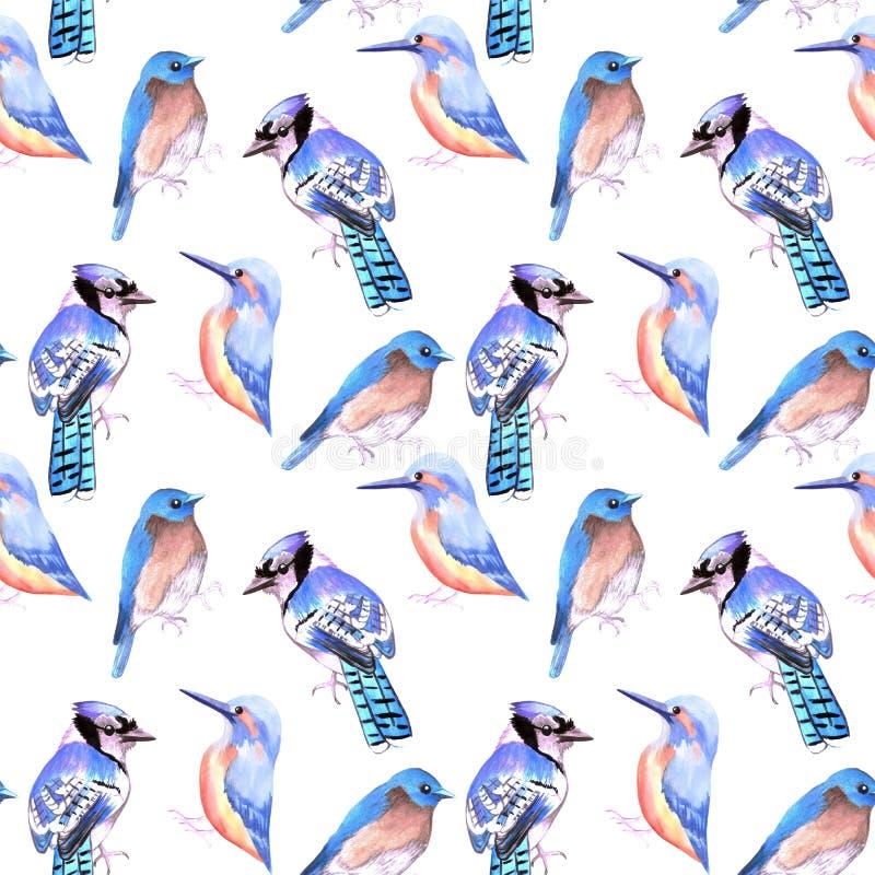 Fåglar kungsfiskare, blåskrika, blåsångare i toner och skuggor av blå sömlös vattenfärgbakgrund stock illustrationer