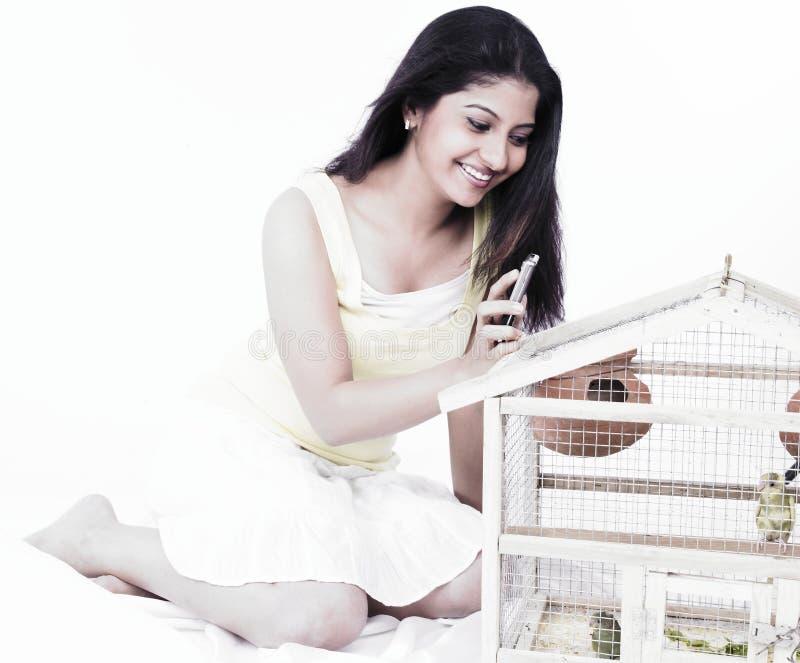 fåglar som ser kvinnan royaltyfri fotografi