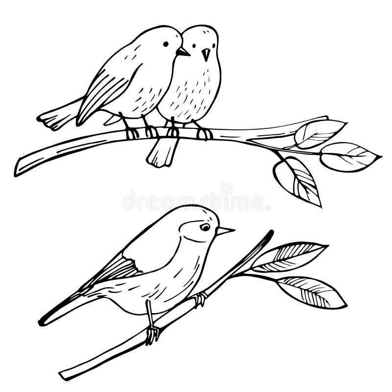 Fåglar som sitter på en filial Vektorn skissar illustrationen vektor illustrationer
