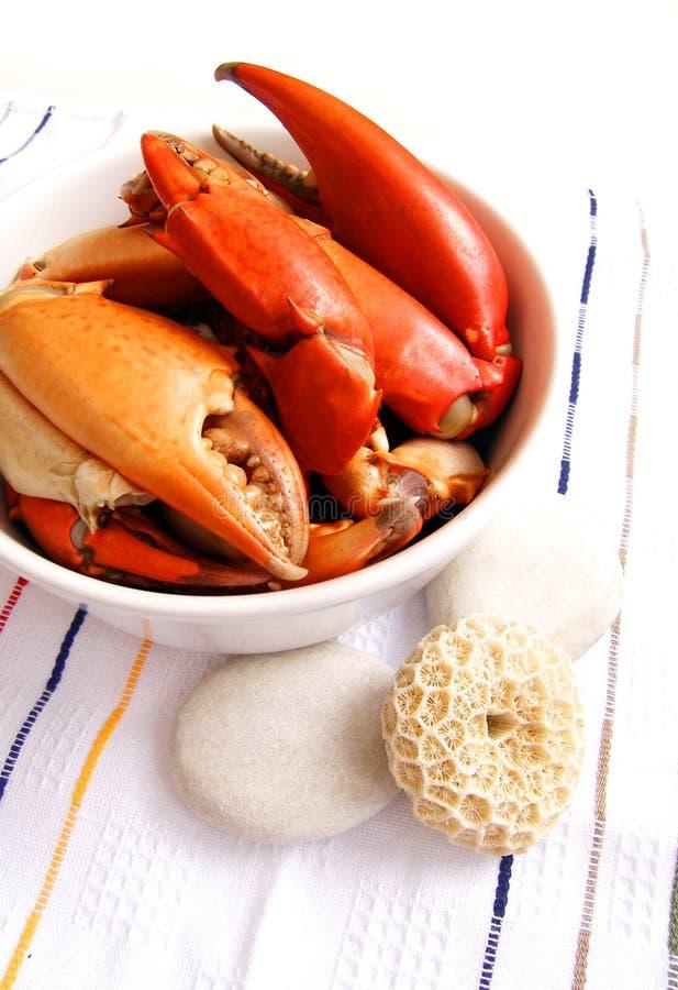 fånga krabbor maträttskaldjuret royaltyfri foto