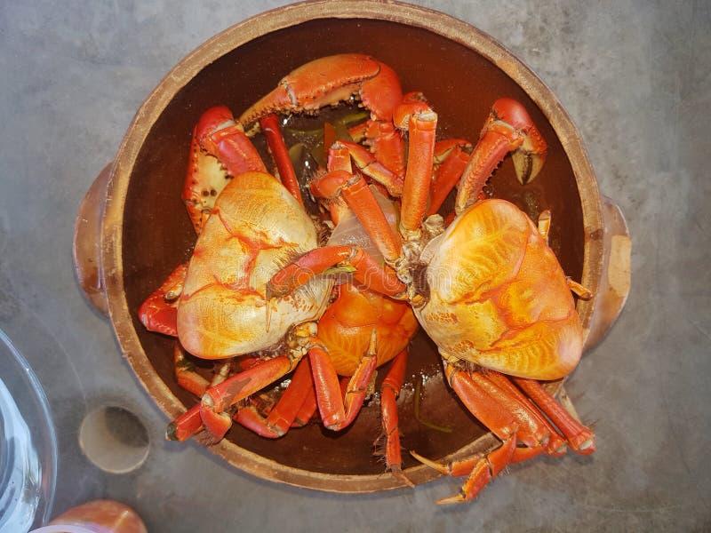 fånga krabbor red royaltyfria foton