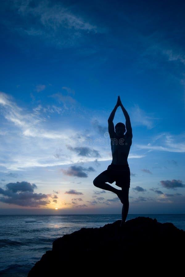 fångande yoga för jämvikt royaltyfri foto