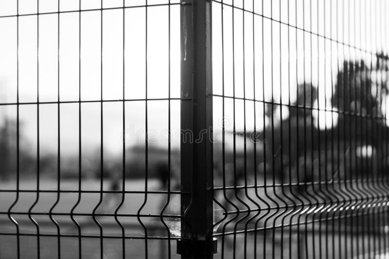 Fångar på en sida av staketet royaltyfri fotografi