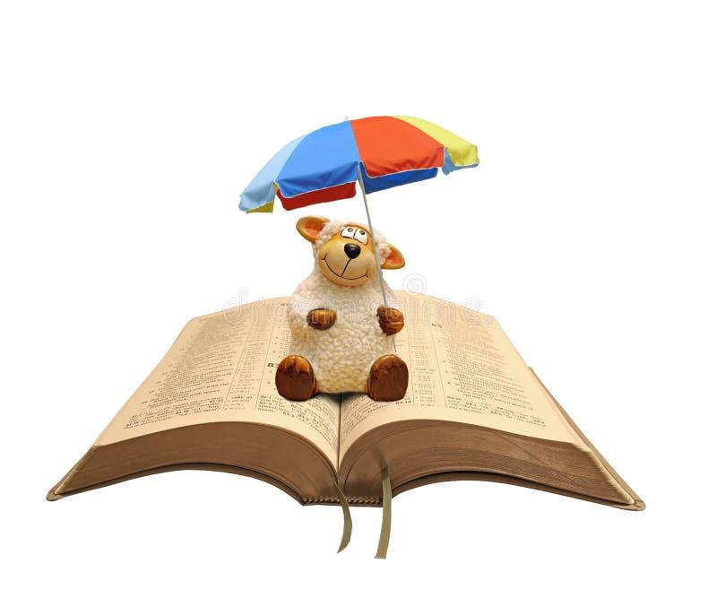 Får - Bibelbible jesus parasol - säkerhetsskydd väder heliga biblar bok Kristian Trust gud fotografering för bildbyråer