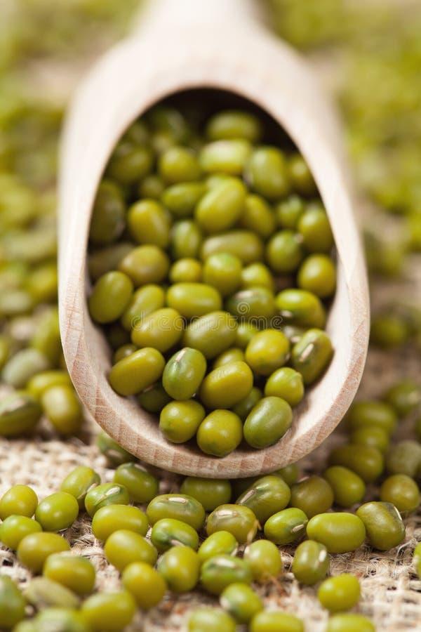 Fèves de mung saines de vert de nourriture dans la cuillère en bois dessus photo stock