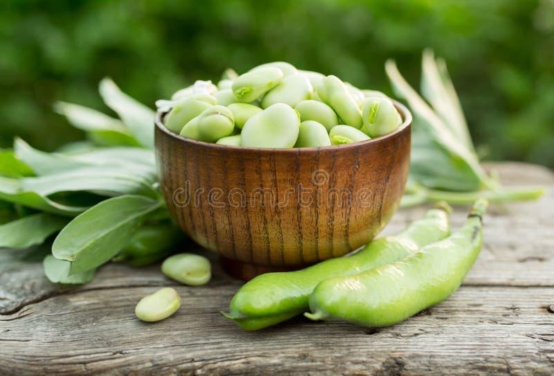 Fèves ou Fava Beans photos libres de droits