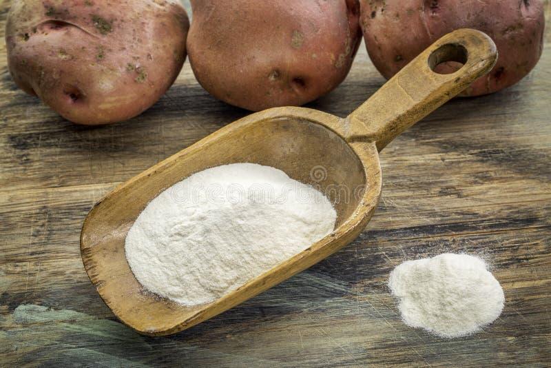 Fécule de pommes de terre photographie stock libre de droits
