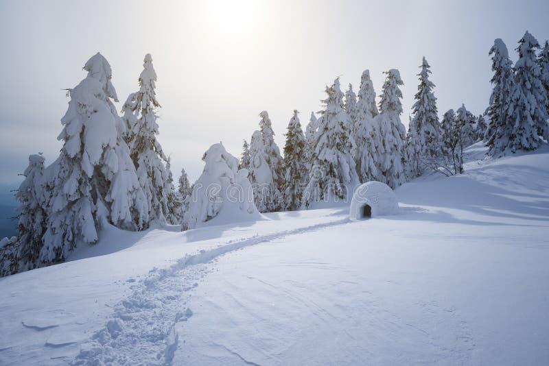 Férias da montanha do inverno com um iglu da neve foto de stock
